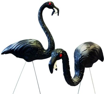 Zombie Flamingoes