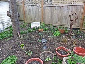 March262015-gardenb