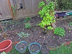 March262015-gardend